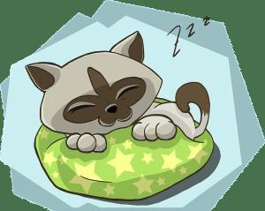 uyku - uykusuzluk testleri
