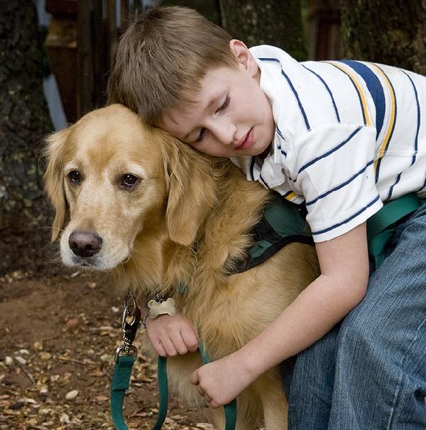 bağkurmakbağlanmakköpeklerveöğrettikleri - Bağ Kurmak... Bağlanmak.... Köpekler ve Öğrettikleri....