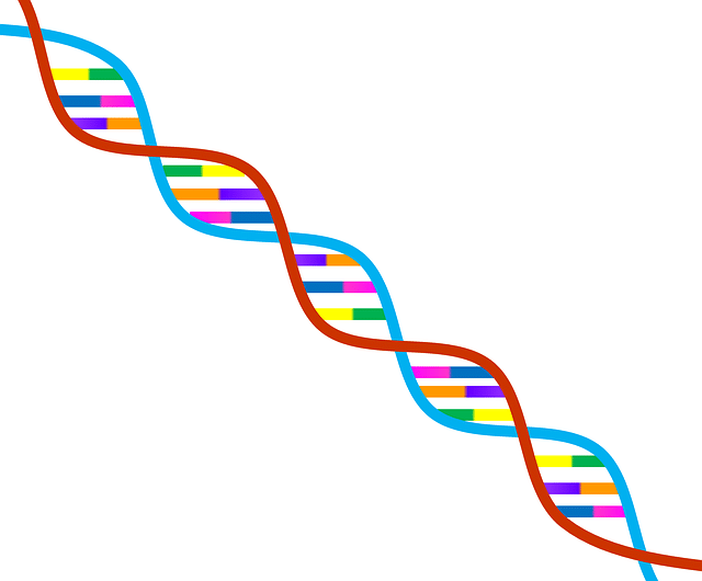 Ruhsal hastalık çevre genetik erol özmen dna 1020669 640 - Ruhsal Hastalıkların Gelişiminde Çevre mi Daha Etkili Yoksa Kalıtım mı ?