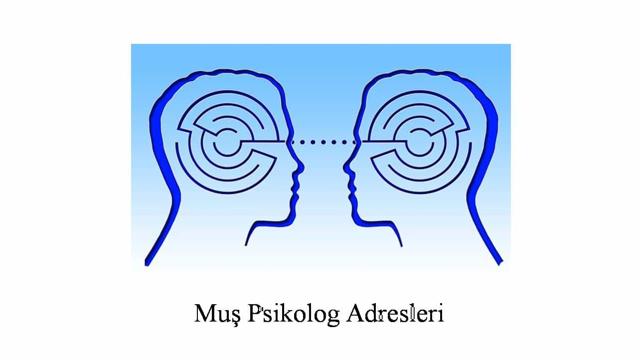 psikolog muş - Psikolog Muş