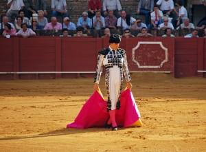 Boğa İle Matador'un Karşılaşması - Esin Nur Akyıldız