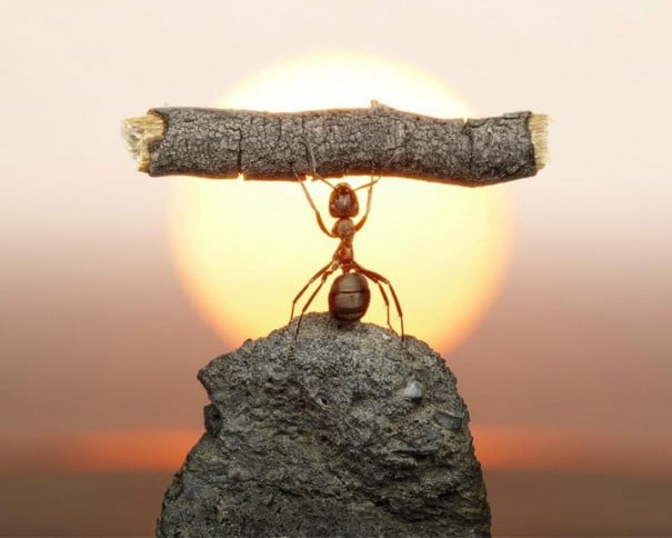 Hayatınızdaki En Büyük Başarınız Nedir Esin Nur Akyıldız e1479117545260 - Hayatınızdaki En Büyük Başarınız Nedir?