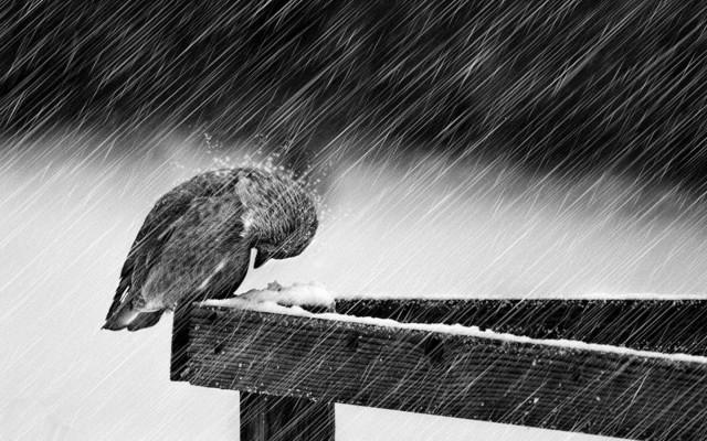 Depresif Kisilik depresyon nedir nasil gecer tedavisi ilaclari cesitleri nasil atlatilir e1492337294296 - Depresyonlu Kişilerde Hangi Belirtiler Görülür ?