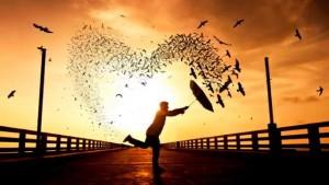 Mutlu Olmak ve Sorumluluk - Zehra Erol